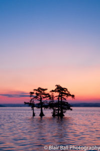 Reelfoot Lake Sunrise