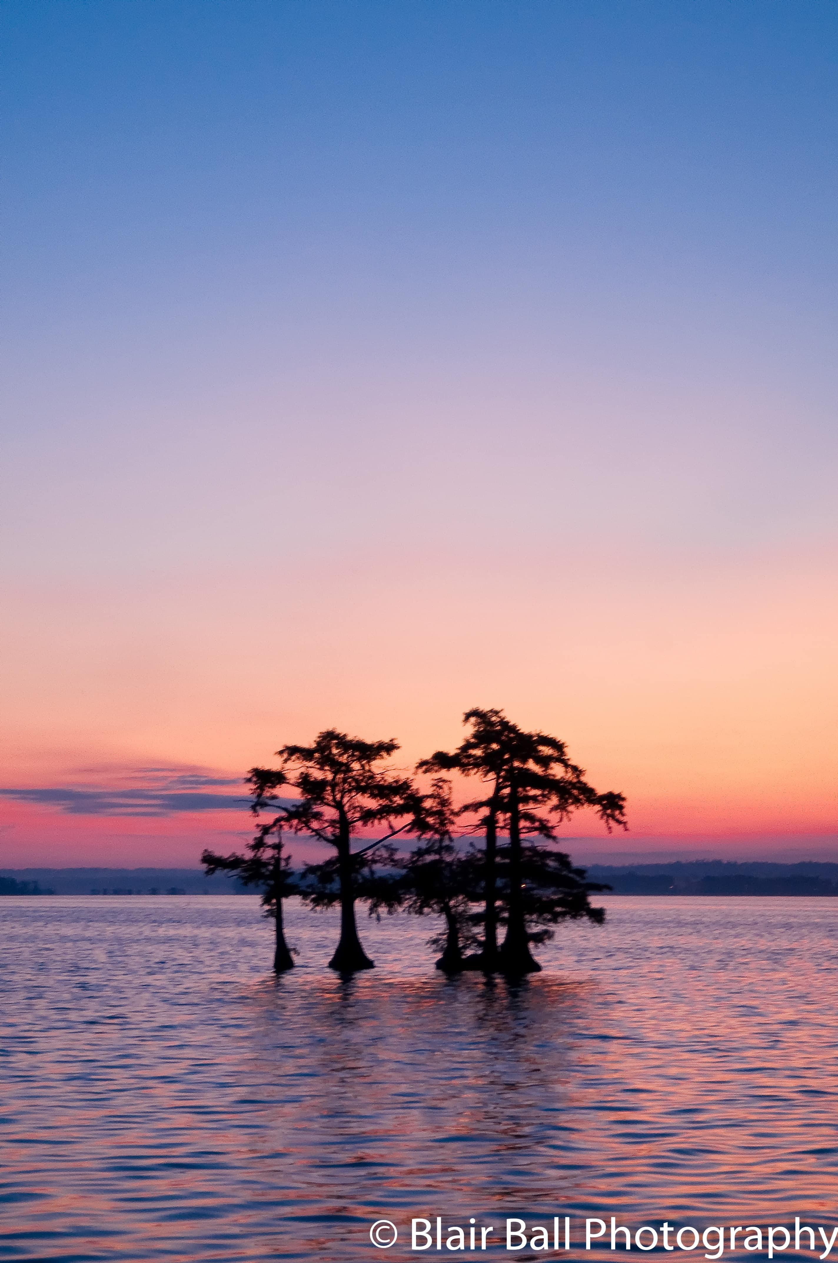 Reelfoot Lake Photo Workshop