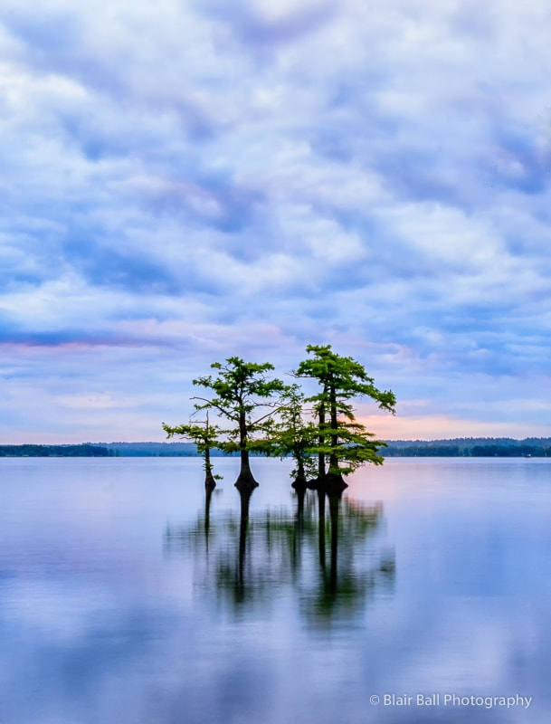 Reelfoot Lake Photography Workshop Images-12