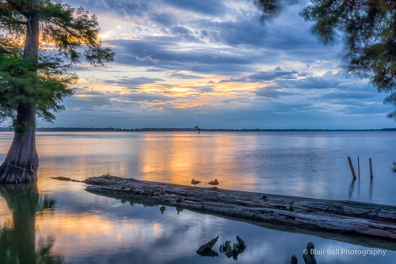 Reelfoot Lake Photography Workshop Sunset Image