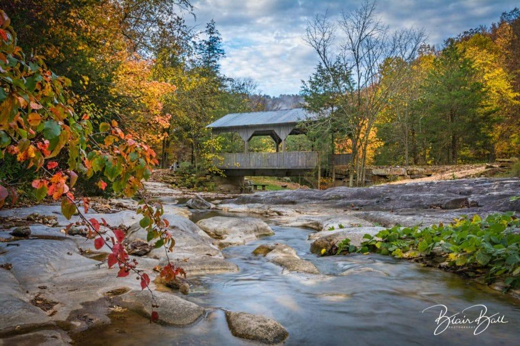 Arkansas Fall Stream_©Blair Ball Photography
