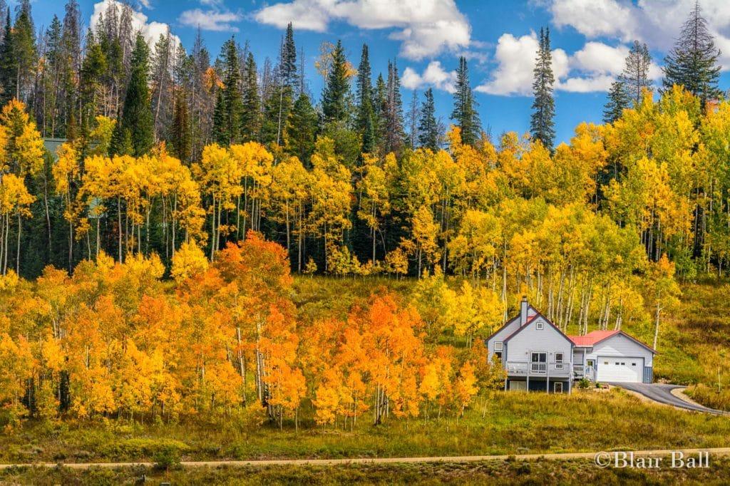 Colorado Aspens Lonley Cabin_ Blair Ball Image-1